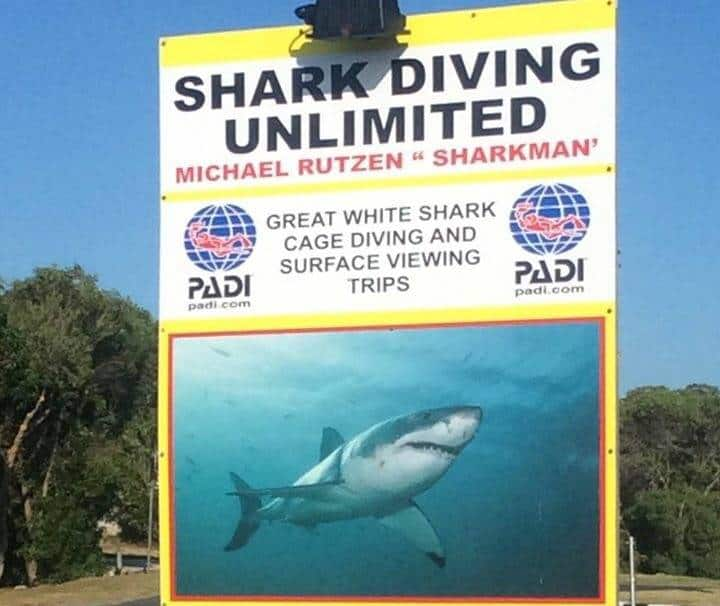 shark cage diving unlimited