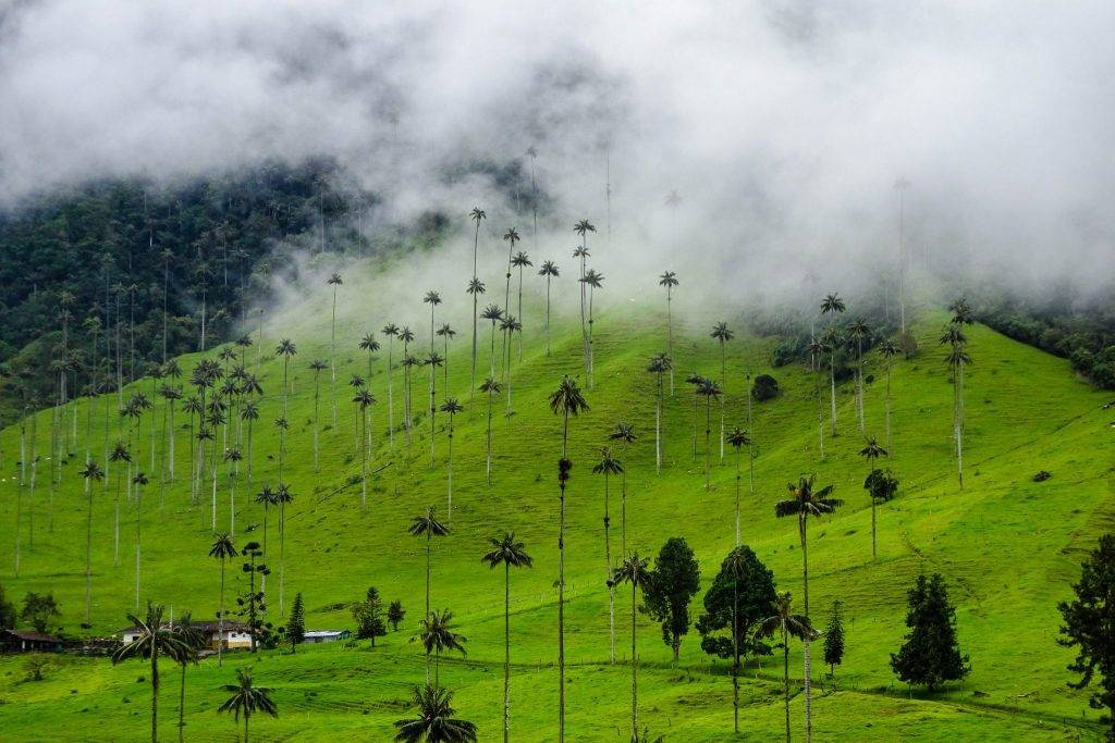 best places to visit Colombia Coroco Valley