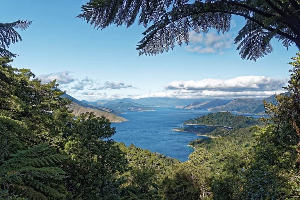 North Island New Zealand Itinerary