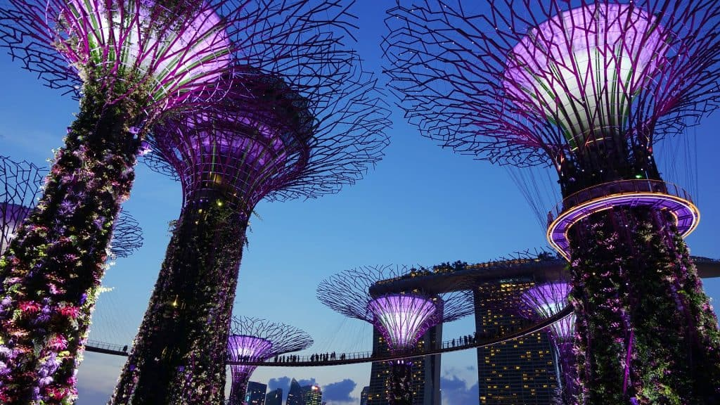 Gardens by the bay - Instagrammable Places in Singapore