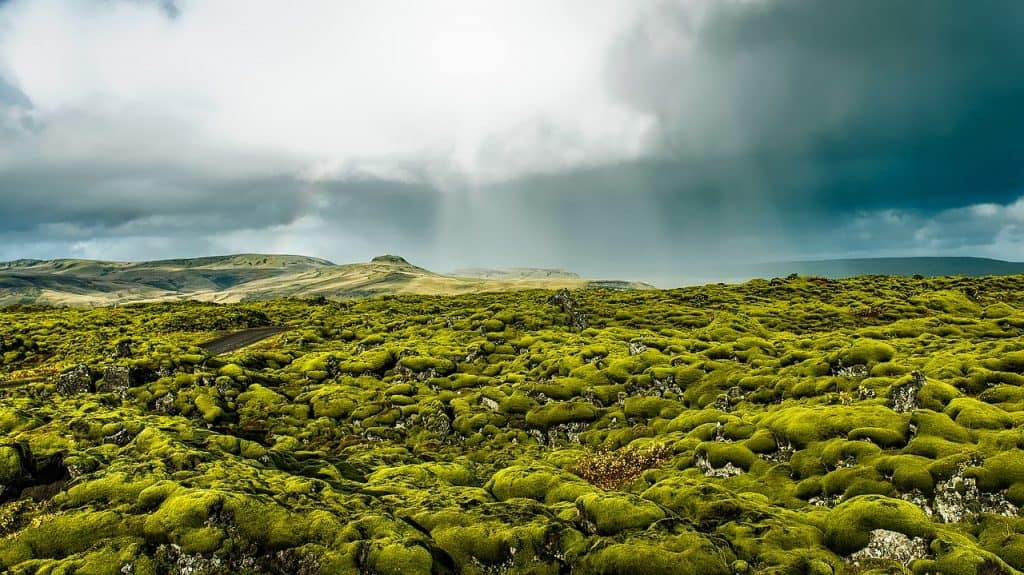 Map Golden Circle Iceland - Travelgal Nicole