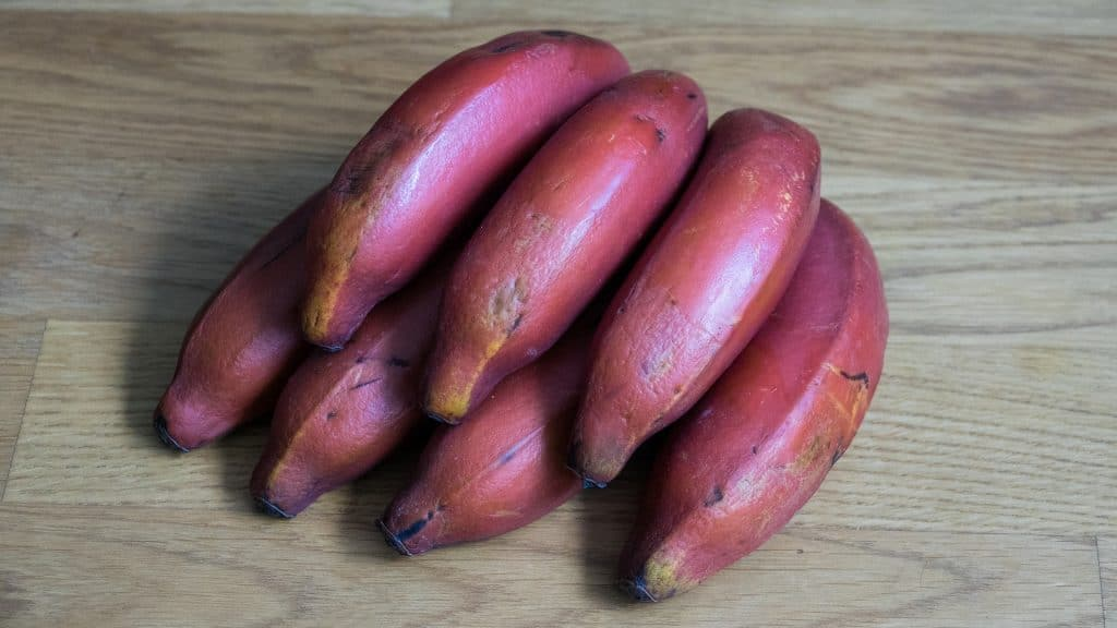 Red bananas in Sri Lanka