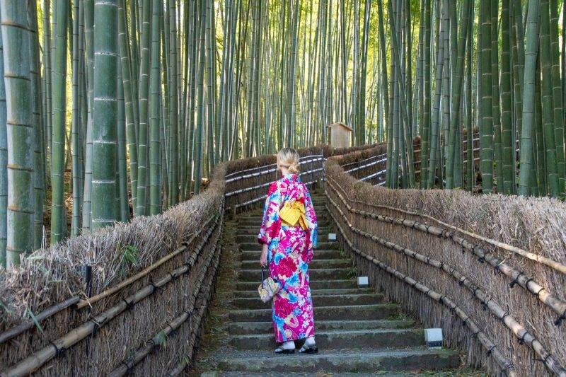 Adashino Japanese temples Kyoto