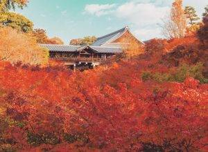must see temples in kyoto