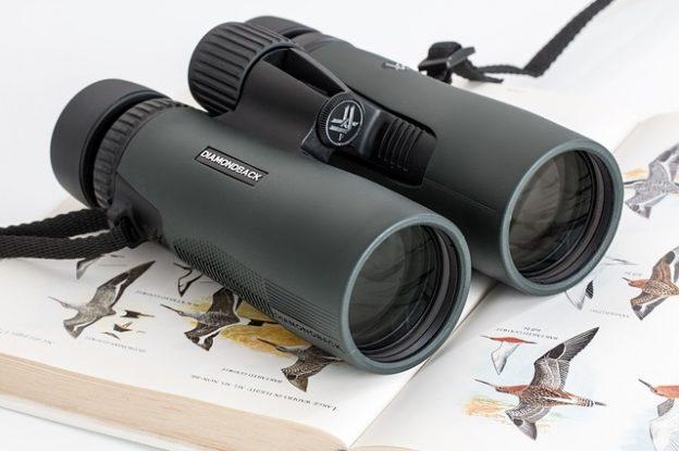 Best Binoculars for Safari in 2019 Reviews
